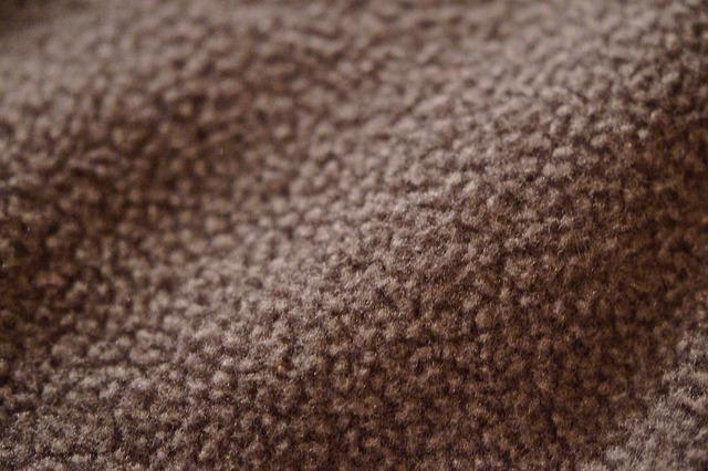 fleece-233768_640